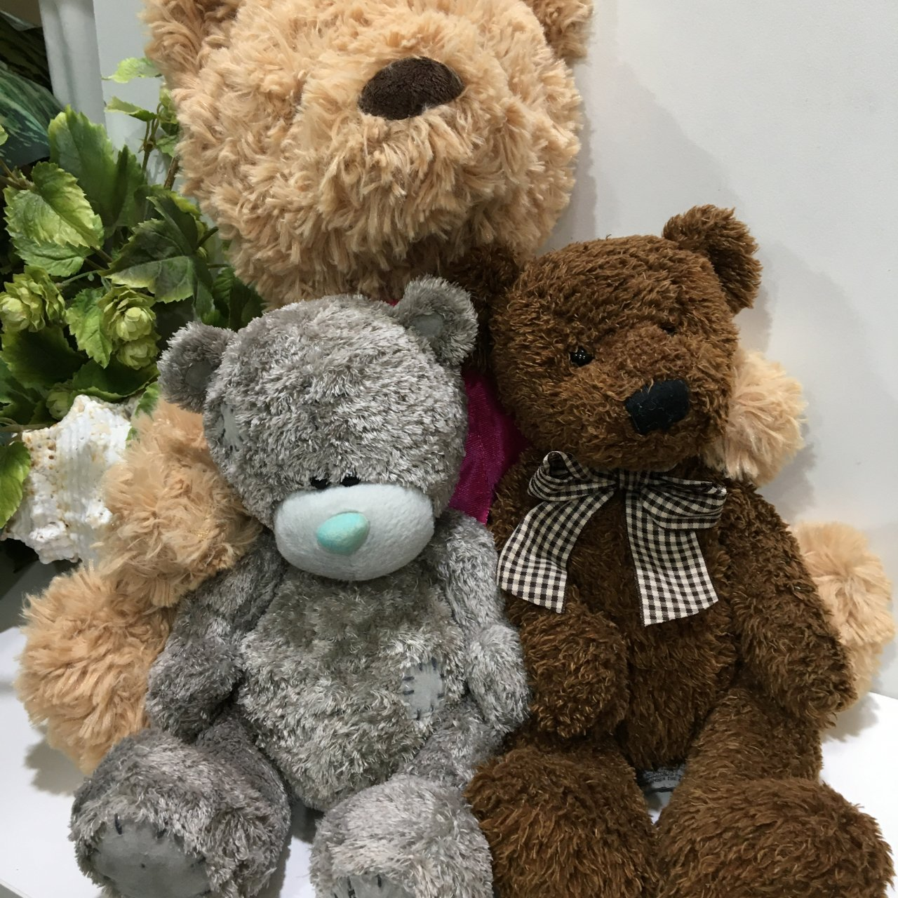 50% Off - Teddy Bear Bundle x 3, Tan/Brown/Grey