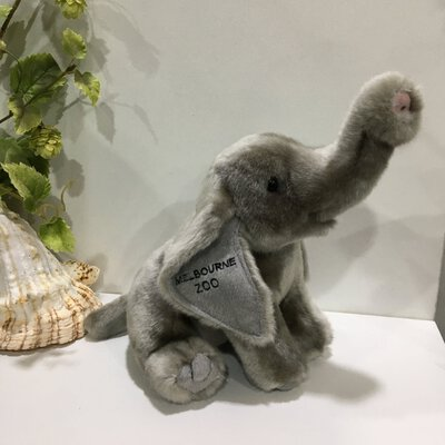 50% Off - Melbourne Zoo, Elephant,Grey, (RRP $24.95)